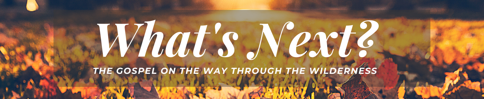 What's Next? Sermon Series